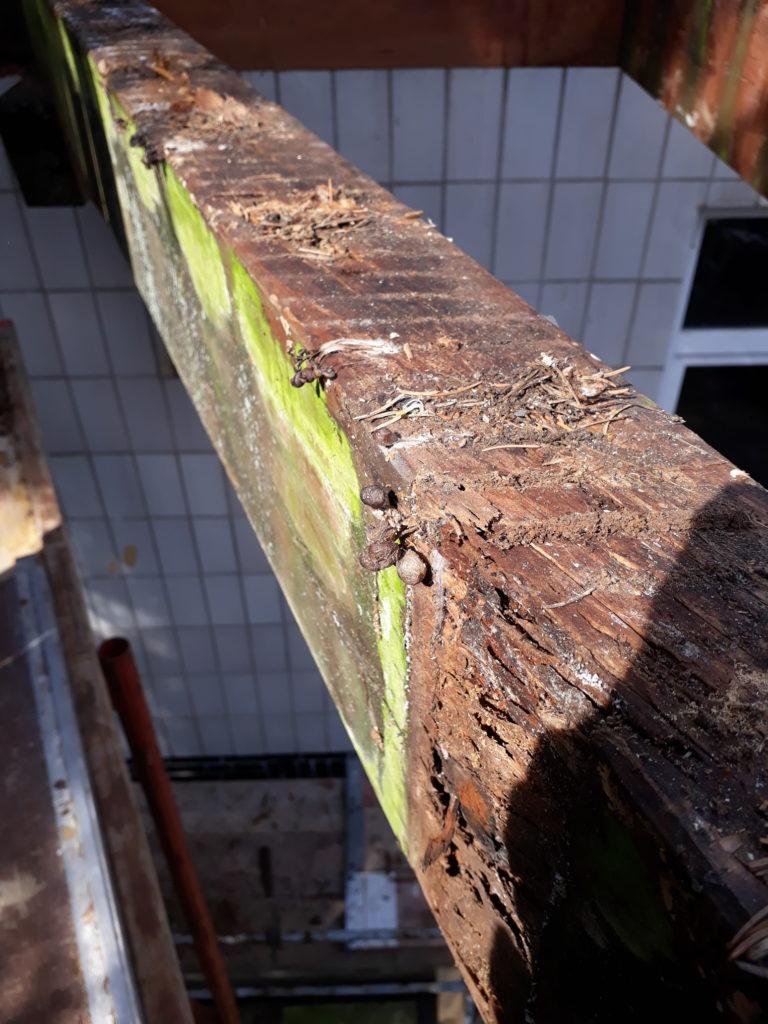Rekonstruktion aufgeständerter Balkon mit Thermo-Esche-Terrassendeck und Holz-Brüstungsgeländer